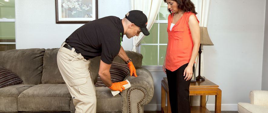 Van Nuys South, CA carpet upholstery cleaning