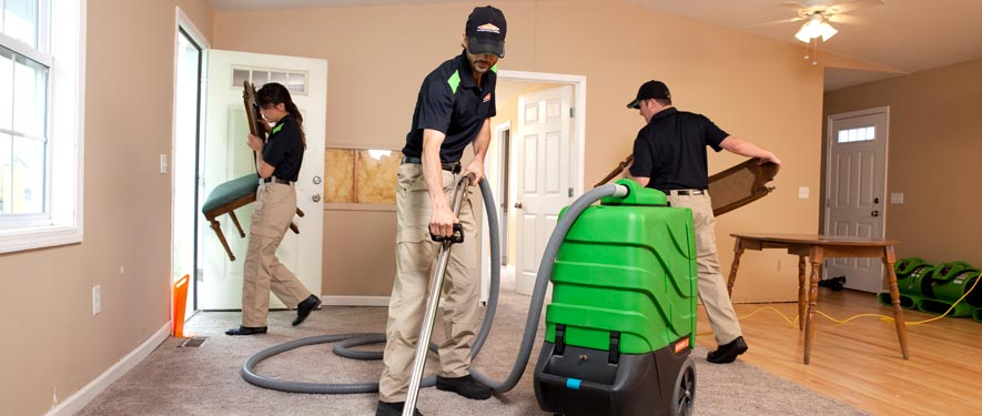 Van Nuys South, CA cleaning services
