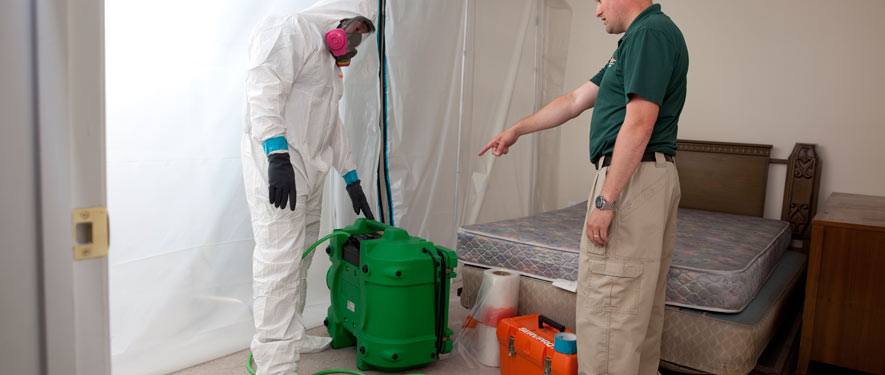 Van Nuys South, CA mold removal process